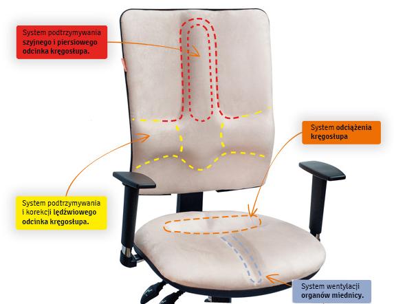 Opis krzesła zdrowotnego Business Plus