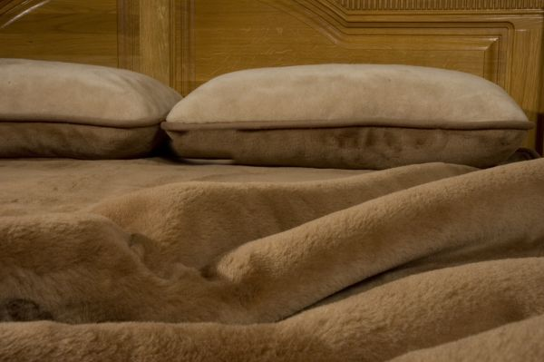 Pościel z wełny wielbłąda - wzór Camel Gładki